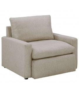 Melanie Chair and a Half